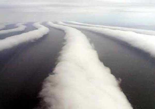 Nubes enredadera