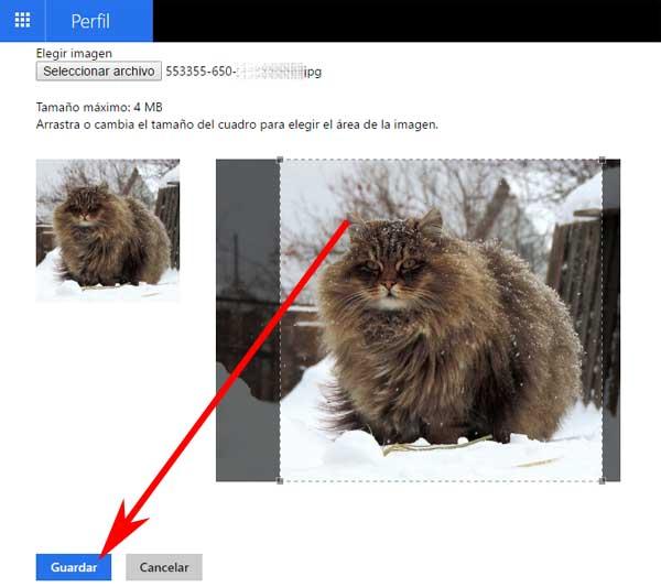 Cómo poner una foto en mi perfil de Hotmail