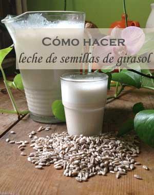 Preparar leche de semillas de girasol