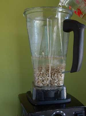 Cómo hacer leche de semillas de girasol casera