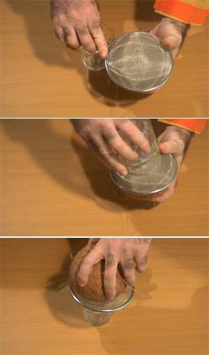 Forma de sacar el agua del coco