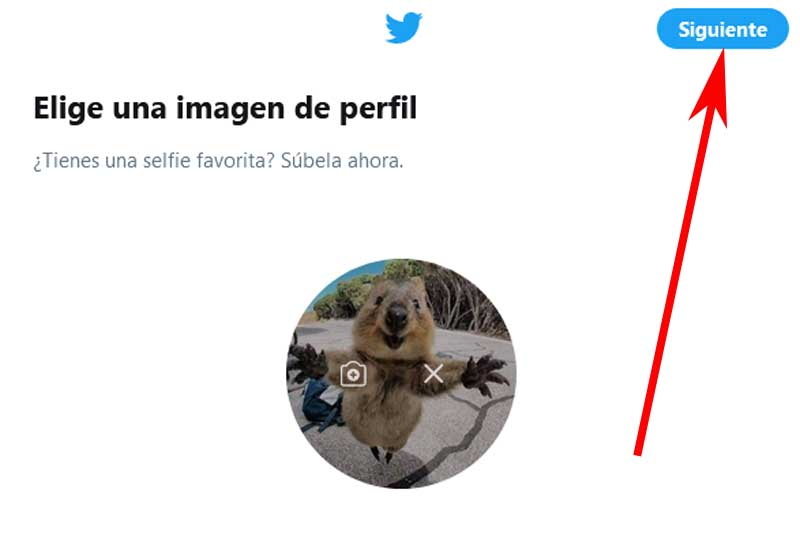 add profile picture on twitter