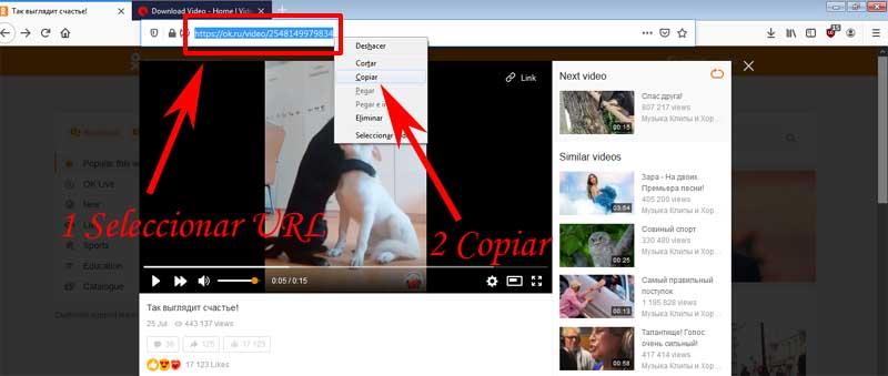 download videos from odnoklassniki