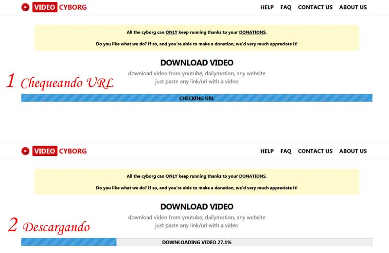 download daily videos online