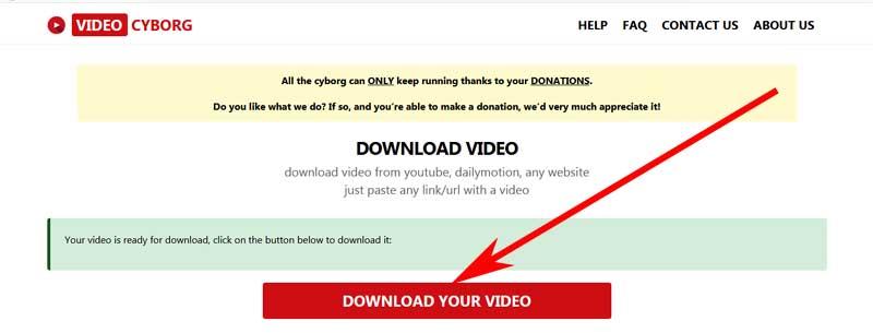 download a video on videcyborg